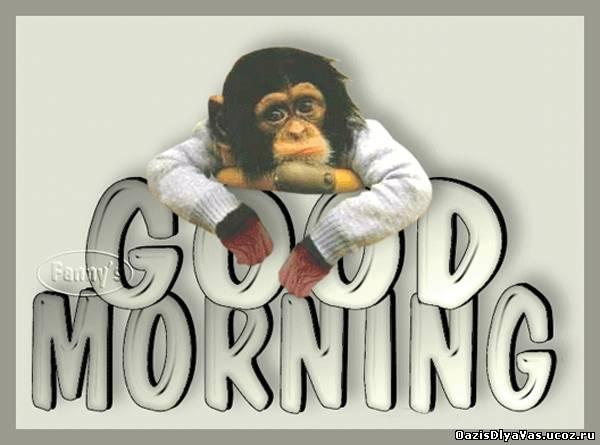 Good Morning Картинки с надписями с кодами