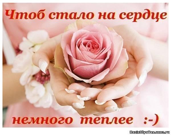 Удачного дня! Хорошего настроения!!! Youtube.